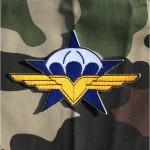 badge-1er-regiment-de-chasseurs-parachutistes-1er-rcp-